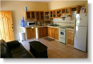 The kitchen is fully furnished with all appliances and utensils